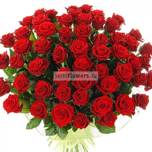 С Днем Рождения! Поздравления форумчан  500x570x0x0x95x1_161999625c20d2283f55cd642d9e6a91